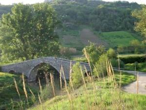 ponte toro
