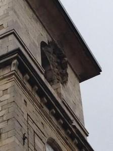 Il campanile della Cattedrale di Trivento colpito dal fulmine