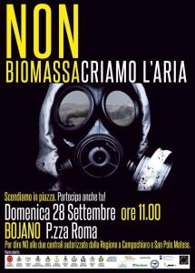 protesta biomasse