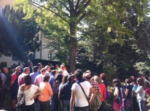 'I Giganti Verdi della Città': lo studio degli alberi del giardino del Convitto Nazionale Mario Pagano
