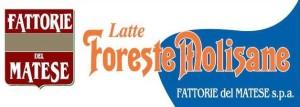 sp__Foreste_Molisane