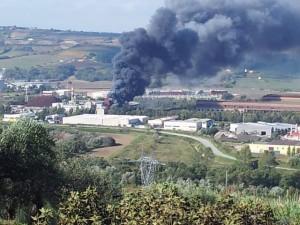 L'incendio divampato alla centrale a biomasse di Termoli