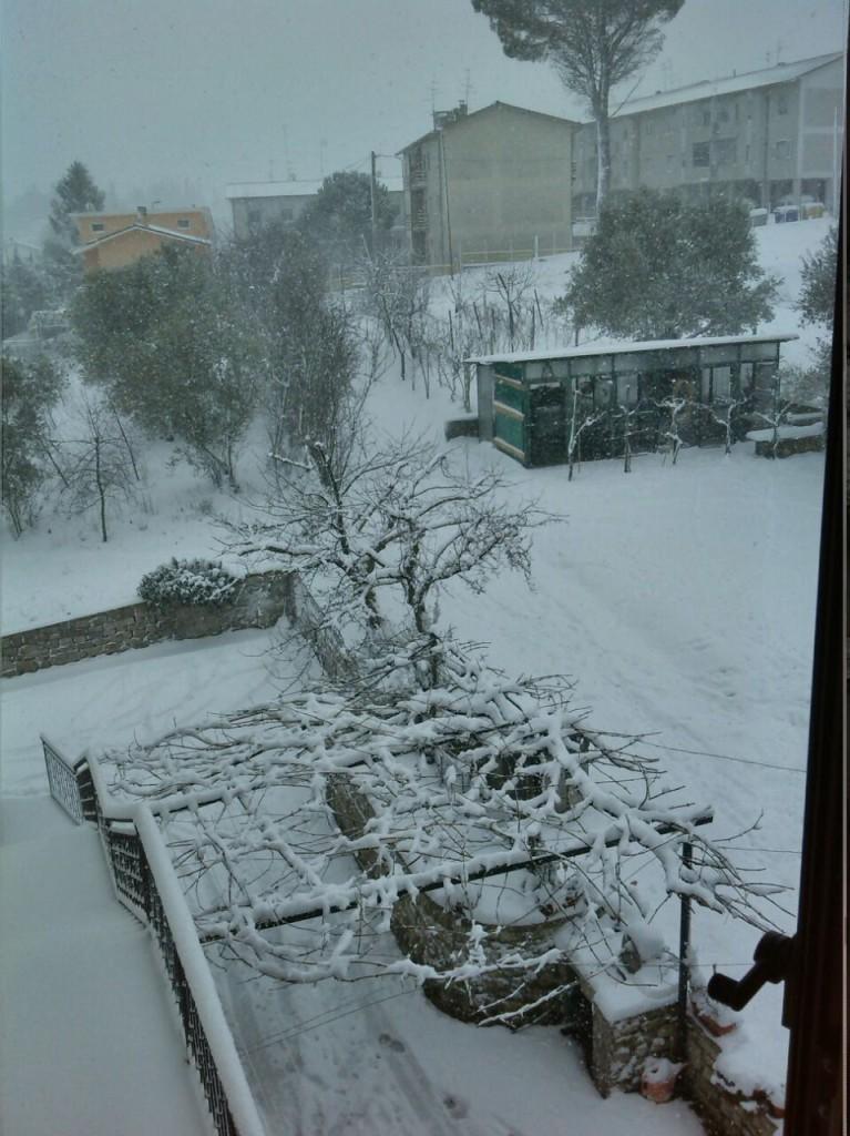 ore 11 a Baranello continua a nevicare