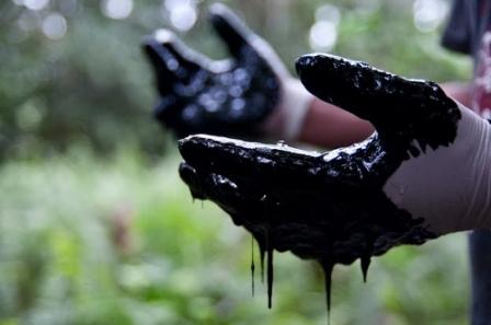 Photo of #ecogiustizia è stata fatta. Giorno storico per il Molise e l'Italia: chi inquina pagherà con il carcere