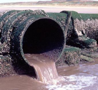"""Photo of Un tuffo dove l'acqua è più … """"inquinata"""": a mollo nei batteri, aumentano i casi di gastroenteriti e dermatiti"""