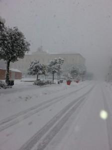 Corso Vittorio Emanuele a Campobasso (foto di Mario Annuario, ore 8,30 di domenica 17 gennaio 2016)