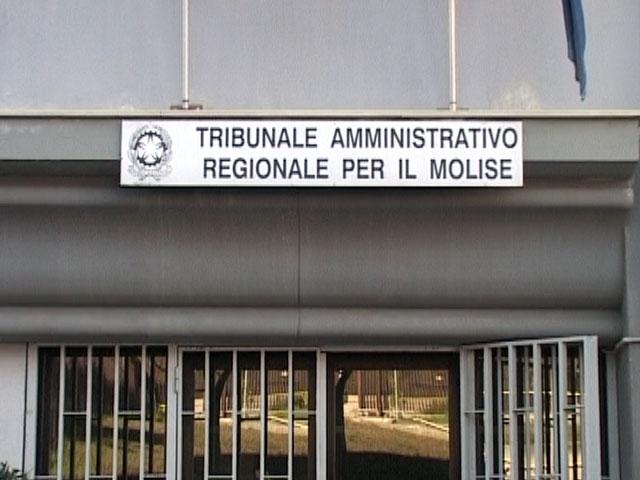 Photo of Sanità, il Tar Molise conferma la legittimità della nomina dei commissari esterni Giustini e Grossi