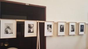 Alcuni scatti della mostra fotografica