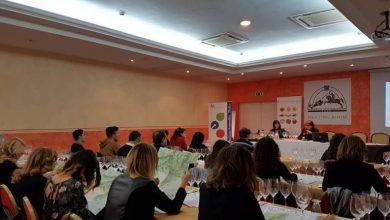 Photo of Pinot nero e Cabernet: ultimo incontro della Fondazione Italiana Sommelier Molise dedicato all'Alto Adige