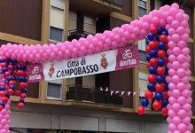 Photo of Campobasso si colora di rosa per il passaggio del Giro d'Italia: emozione e partecipazione in strada