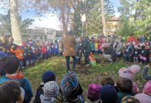 Photo of Il Comune di Campobasso ha festeggiato la Giornata Nazionale degli Alberi