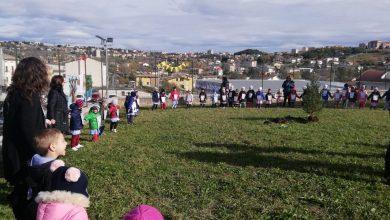 """Photo of """"Piedi a terra, naso all'insù, del futuro il protagonista sei tu"""", la scuola dell'infanzia di via Tiberio celebra la Festa dell'Albero"""