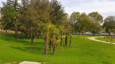 Photo of A Campobasso, in via Giambattista Vico, un nuovo parco a servizio della città. Il lavoro è frutto delle opere di urbanizzazione della ditta che ha costruito tre palazzi