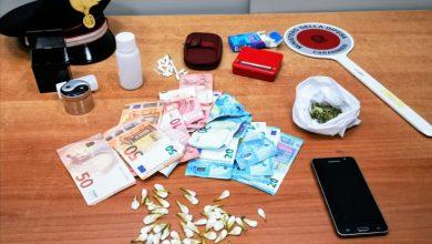 Photo of Market della droga a Termoli: arrestato un 25enne pusher