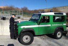 Photo of Carabinieri Forestali, in provincia di Isernia denunciati tre gestori di depuratori urbani