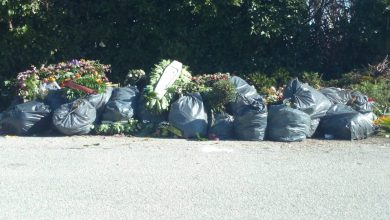 Photo of La segnalazione, c'è un problema immondizia al cimitero di Campobasso