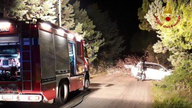 Photo of Termoli, incidente sulla provinciale 51: auto finisce contro un albero