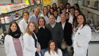 Photo of Scoperta una nuova interazione tra recettori delle cellule nervose: si aprono nuove possibilità per le terapie contro il Parkinson