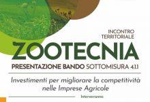 Photo of Nuove risorse per le aziende zootecniche, mercoledì l'appuntamento a Frosolone