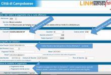Photo of Il Comune di Campobasso attiva il sistema PagoPA per il pagamento della mensa scolastica