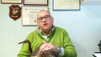 Photo of Covid e medicina veterinaria: il Ministero pubblica le linee guida per il monitoraggio degli animali nelle famiglie dei contagiati