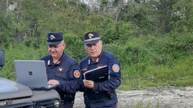 Photo of Tagliano legna senza autorizzazione, denunciata un'impresa boschiva
