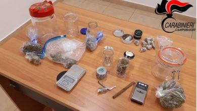 Photo of Ripalimosani, blitz dei carabinieri contro lo spaccio di droga. Due ragazzi in manette