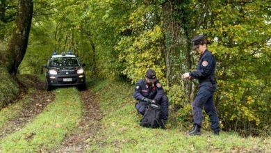 Photo of Risiede in Abruzzo ma caccia in Molise senza autorizzazione, i carabinieri forestali sanzionano cacciatore irregolare